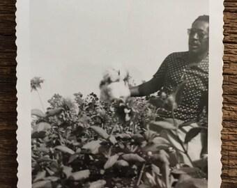 Original Vintage Photograph Cotton Crop