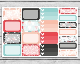 Snow Birds Assorted Boxes Planner Stickers