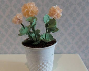 Geranium in apricot color to your dollhouse