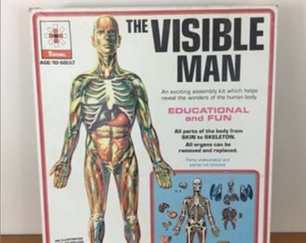 1959 The Visible Man Anatomical Education Assembly Kit, Skin, Skeleton, Organs, New in Box
