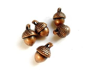 6 Antique Copper Acorn Charms - 21-9-2