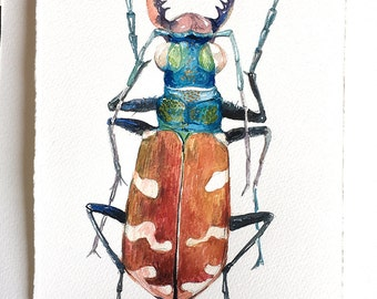"""Longhorn Beetle painting, watercolour painting original, botanical art, Insect illustration, Small watercolours 7,5""""x11""""/ Garden lover gift"""