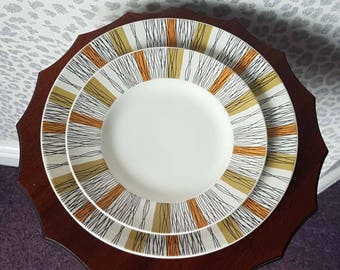 Vintage Midwinter 'Sienna' Dinner and Side Plates 1960s