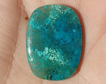 Chrysocolla in Chalcedony 19x26x5mm Baghdad mine AZ double sided