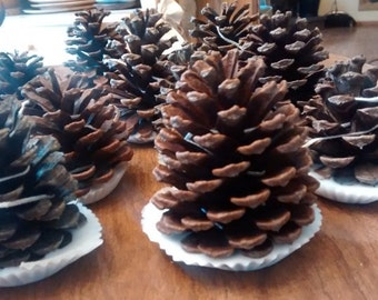 Pinecone Fire Starters  (lot of 10) - Great for Holiday Gifts, Stocking Stuffers And Wedding Guest Favors