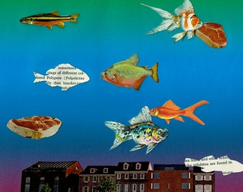 Flying Fish Collage Print