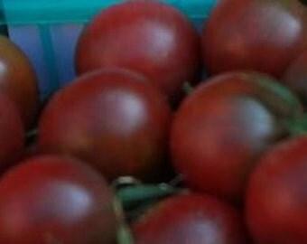 Chocolate Drops Cherry Tomato, rare OP seeds