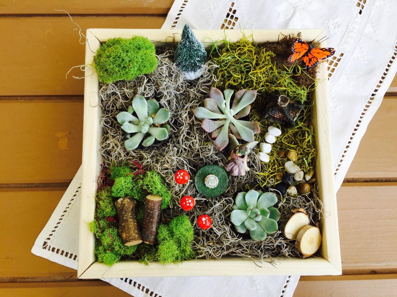 Fairy garden fairy garden kit gift for by theetiquetteseed for Fairy garden kits
