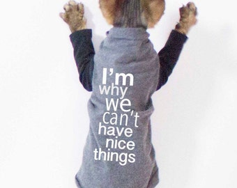 Sphynx Clothes - Cat shirt I'm why we can't have nice things, Sphynx cat clothes, Cat Sweater, Striped Sleeves, cat clothing, dog clothes