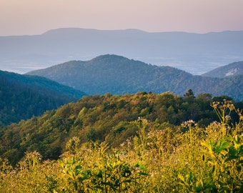 Layers of the Blue Ridge at sunset, in Shenandoah National Park, Virginia.   Photo Print, Stretched Canvas, or Metal Print.