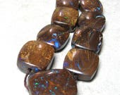 Chocolate Australian Boulder Opal Freeform Graduated Smooth Pieces 16X13mm to 12X10mm - 8 inch Strand