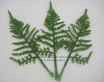 Pack of 10 Green Fern Leaves