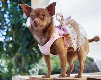 CHIA Rag Muffin Small Dog Harness Vintage Inspired Shabby Chic Lace Skirt Pink Floral Dress Girl Dog