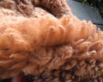 First shearing= Fawn/Orange Baby Alpaca Fleece