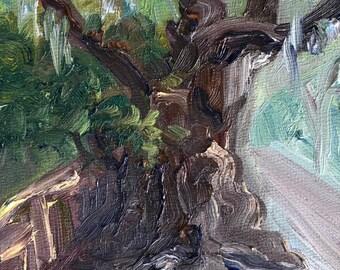 """Wesley Oak, oil on panel, 4"""" x 4"""""""