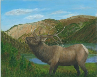 Bull Elk, Original Painting