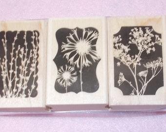 Hero Arts Florals in shapes rubber stamp set 2007 wood mounted flowers botanicals three stamps journaling scrapbooking stamping cardmaking