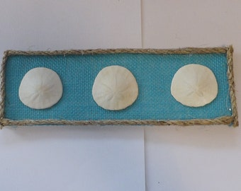 4 X 12 Canvas with burlap and 3 real Sand Dollars with rope frame