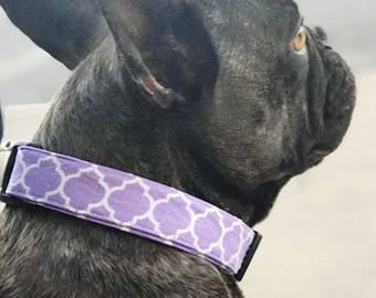 Dog collar, flower dog collar, dog accessories, Spring dog collar, Pet collar, Pet accessories, Girl dog collar, girl dog, floral dog collar