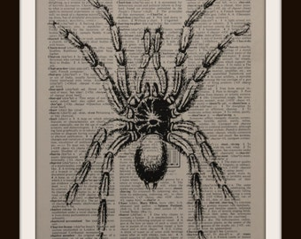 Tarantuala  ~ Authentic Dictionary/Encyclopedia Page Print ~Decor ~insect~ home decor ~ office ~ shcool~library ~ Science~ big spider~ nerds