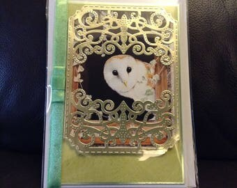 Owl all occasion card