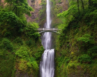 Multnomah Spring, Waterfall, Columbia River Gorge, Leaves, Oregon, Pacific Northwest, Iconic - Travel Photography, Print, Wall Art