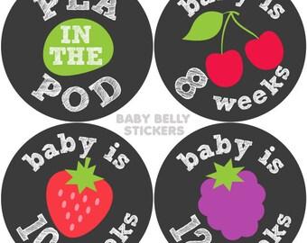 Pregnancy Stickers, Maternity Stickers, Bi-Weekly Pregnancy Stickers, Pregnancy Belly Stickers, Baby Bump Sticker, Pregnancy Milestone,