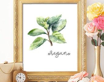 75% OFF SALE - Herbs Oregano - 8x10 - Printable Art, Dorm Decor, Wall Art, Kitchen Art, Home Decor, Herb Art, Herb Prints, Herb Wall Art