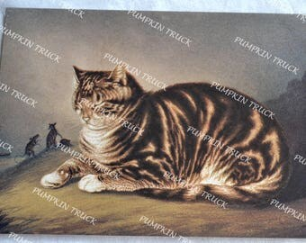 Vintage Note Card - Napping Cat and Mice - Unused