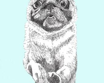 Pug - Happy Birthday