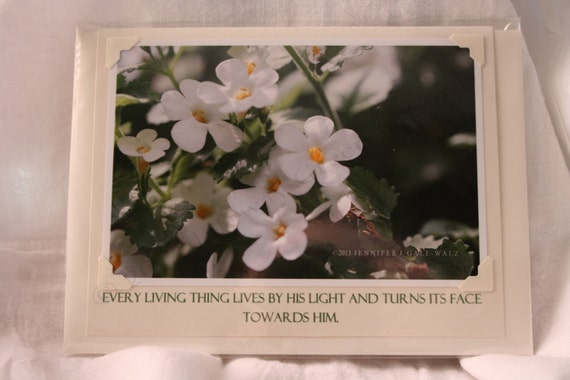 Lifeway Greeting Cards - Inspirational Card #5-INSP-1B