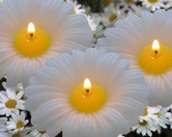 Daisy Floating Candles, Box of 4