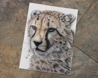 Cheetah Original Drawing