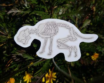Big Cat Skeleton Sticker