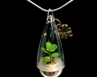 Live Rose Succulent Necklace / Wearable Live Plant / Terrarium Necklace / Miniature Terrarium / Tiny Wearable Terrarium Accessories