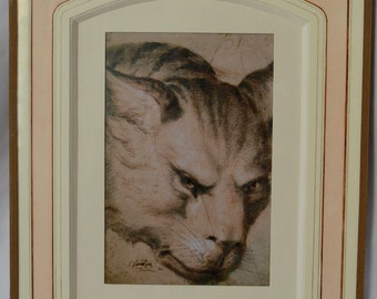 French School circa 1700 Study Of The Head of a Wild Cat Drawing Signed J. Sarrazin - Vintage Framed Engraving Etching - French Country