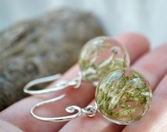 Epoxy resin Moss resin earrings hook Earrings with real forest Moss lichen earrings forest earrings Forest jewellery gift for wife