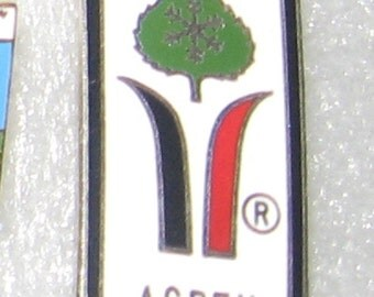 Aspen Colorado hat pin lapel pin. Safety pin back. Cloisonne style design.