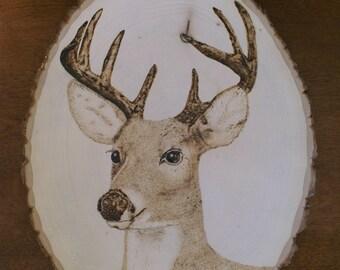 Pyrographed Deer