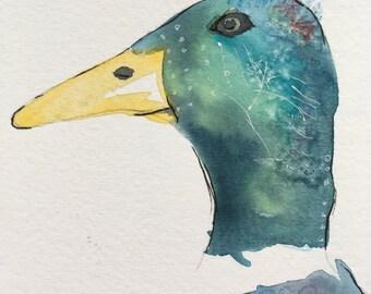Jemima duck - modern special fx watercolour