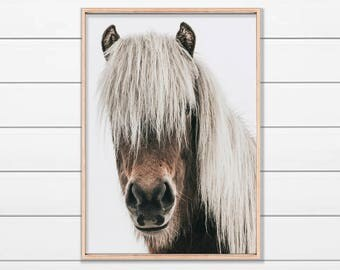 Icelandic Horse Print, Horse Art, Large Printable Poster, Wild Horse