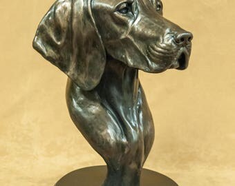 German Shorthair Pointer Limited Edition Life Size Cold-Cast Bronze Bust Statue