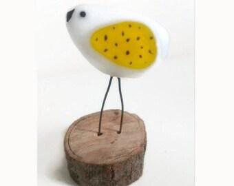 Bird, bird of fused glass, Bird, bird, Creation of Luluverre glass Fusing, handmade, fact in Quebec