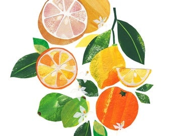 Citrus - Giclee Print of an Original Collage