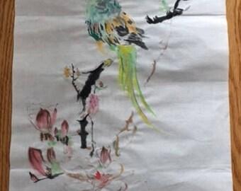 鹦鹉与玉兰 Parrot and Magnolia