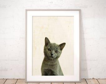 Baby Kitten Digital Art Print - Cute Cat Nursery Animals Wall Art - Printable Neutral DIY Kids Room Decor Baby Shower Gift Digital Download