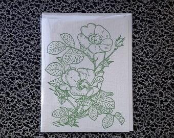 wild rose letterpress card green sea rose