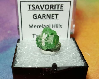 Sale TSAVORITE GARNET Bright Green Terminated Crystal Cluster In Perky Mineral Specimen Box From Tanzania