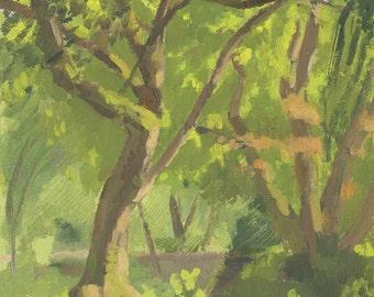 SALE! Trees in the Park: Original Oil Painting Plein Air Landscape