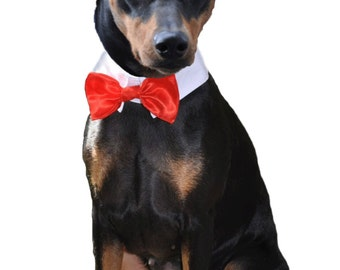 "The Aristocrat Top Hat and Bow Tie for Large sized dogs with 16-18"" collar size"